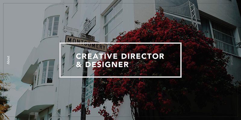 西安网站设计公司_案例欣赏